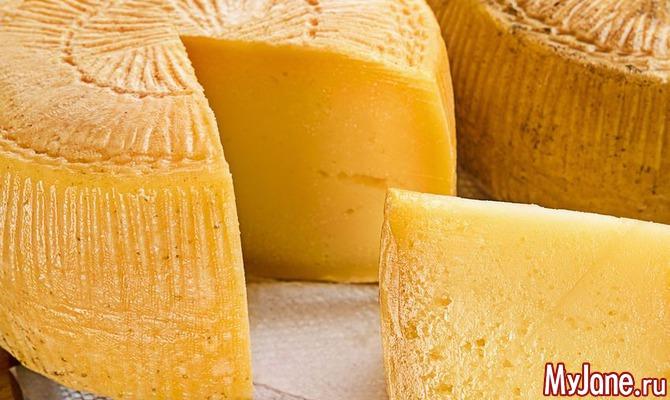 Сыр любят не только мыши...