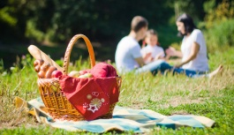 10 правил безопасного пикника