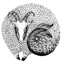 Чего НИКОГДА нельзя говорить разным знакам Зодиака - «Эзотерика»
