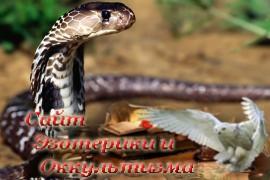 В чем заключается культ змеи в Индии? - «Древние культуры»