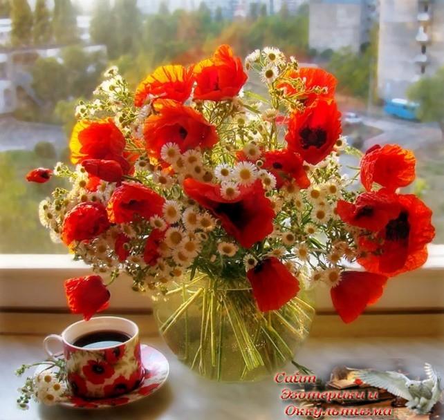 С чего начать утро, чтобы день был удачным: советы Натальи Правдиной - «Эзотерика»