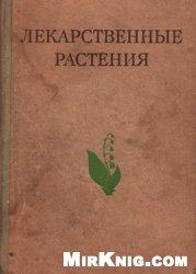 Лекарственные растения (Растения-целители).