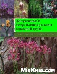 Декоративные и лекарственные растения (открытый грунт)