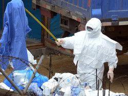 Япония поставит защитное снаряжение от Эболы в Африку