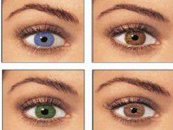 Цвет глаз влияет на склонность человека к алкоголизму