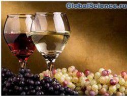 Отдельный вид вина способен сжигать лишний жир
