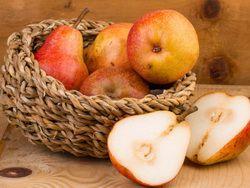 Грушевая диета понижает количество потребляемых жиров