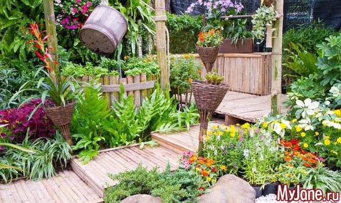 «Висячие» сады и «зеленые» стены