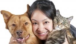 Домашние животные – защита вашего здоровья