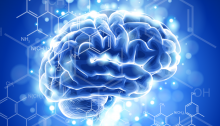 философия мозга - «Прикоснись к тайнам настоящего и будущего»