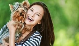 Каких собак лучше всего содержать в квартире