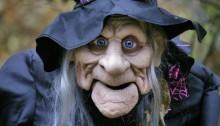 Признаки ведьмы - «Прикоснись к тайнам настоящего и будущего»