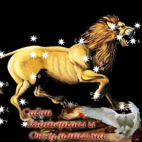 2016-й будет невероятным годом для Львов! - «Эзотерика»