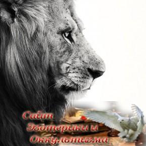 30 причин, почему никто не может жить без Львов - «Эзотерика»