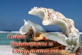 Гадание на морской раковине - «Предсказания»