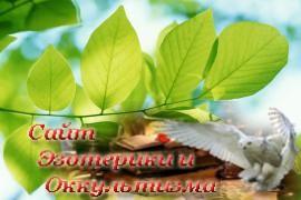 Гадание на растениях - «Предсказания»