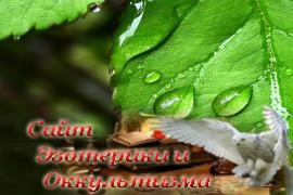 Лекарственные растения индейцев - «Древние культуры»