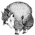 Верность по знаку Зодиака - «Эзотерика»