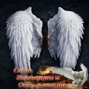 Вячеслав Гусев: Любые проблемы, в том числе и болезни — это просто свернутые крылья - «Эзотерика»