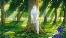 Отзыв Практики Лесного Рэйки 2 - «Прикоснись к тайнам настоящего и будущего»