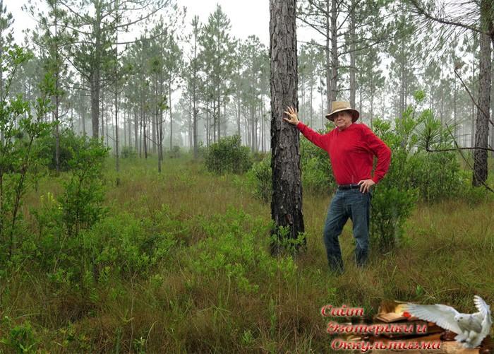 Человек высадил 8 млн деревьев - «Эзотерика»
