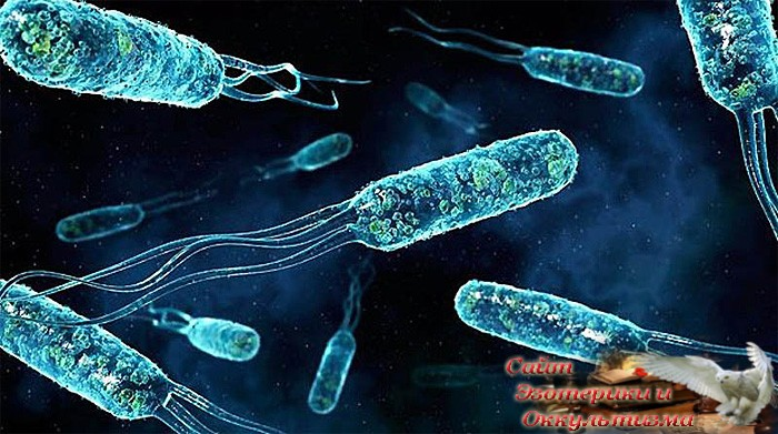 Космос биомолекулярной жизни. Часть 2 - «Эзотерика»
