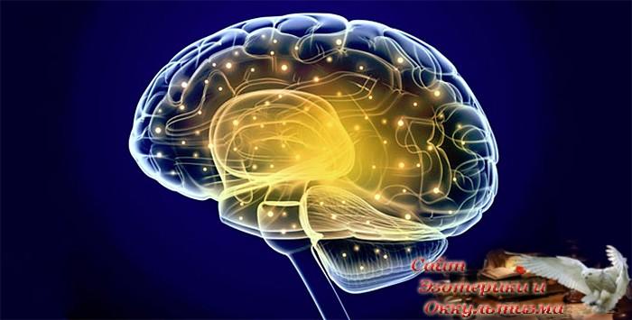 Современная метафора мозга – компьютер - «Эзотерика»