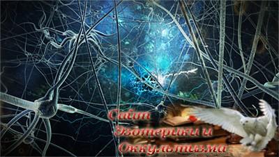 Зеркальные нейроны: вымысел и реальность - «Эзотерика»