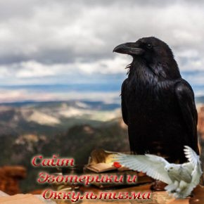 Что символизирует ворон, кроме смерти? - «Эзотерика»