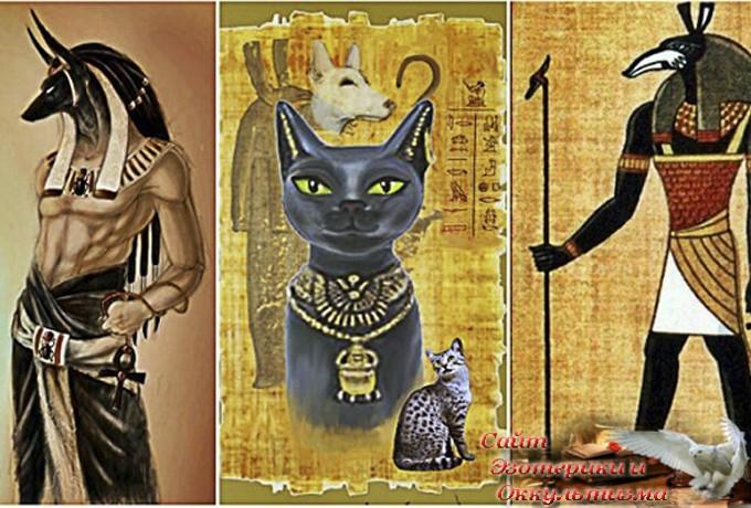 Что означает ваш Египетский знак зодиака и что он говорит о вашей жизни? - «Эзотерика»