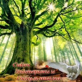 14 растений, обладающих магическими свойствами - «Эзотерика»