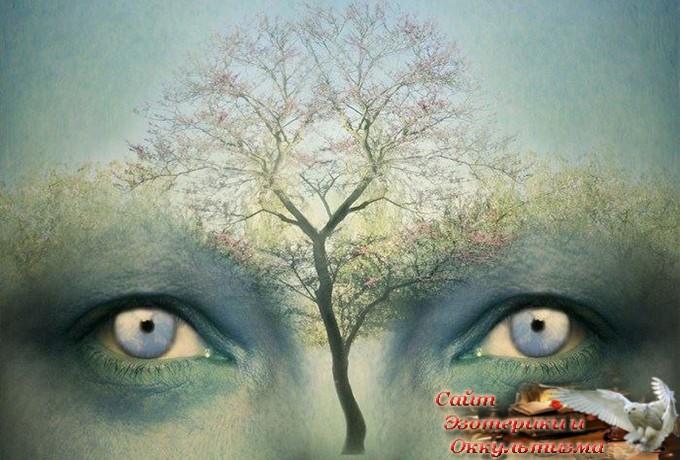 10 уровней сознания – на каком находитесь вы? - «Эзотерика»