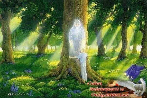 Отзыв Практики Лесного Рэйки 2 - «Прикоснись к тайнам»