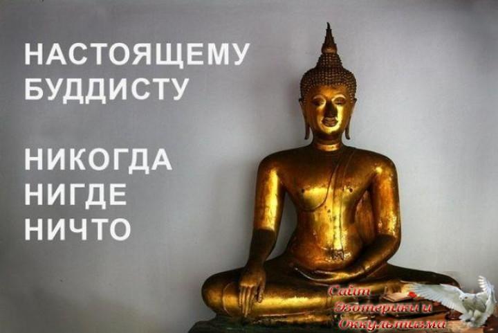 Астрологический прогноз на неделю с 8 по 14 июля 2019 года. Эзотерика - Живое Знание - «Эзотерика»