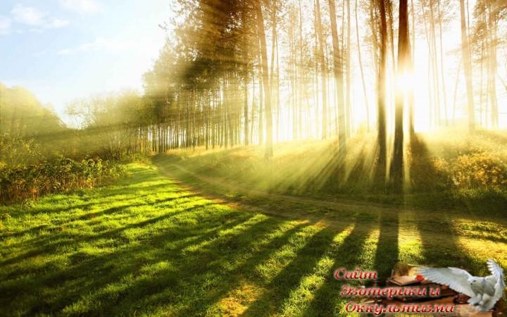 Солнце и Земля: непознанная суть. В поиске ответов на вопросы. Эзотерика - Живое Знание - «Эзотерика»