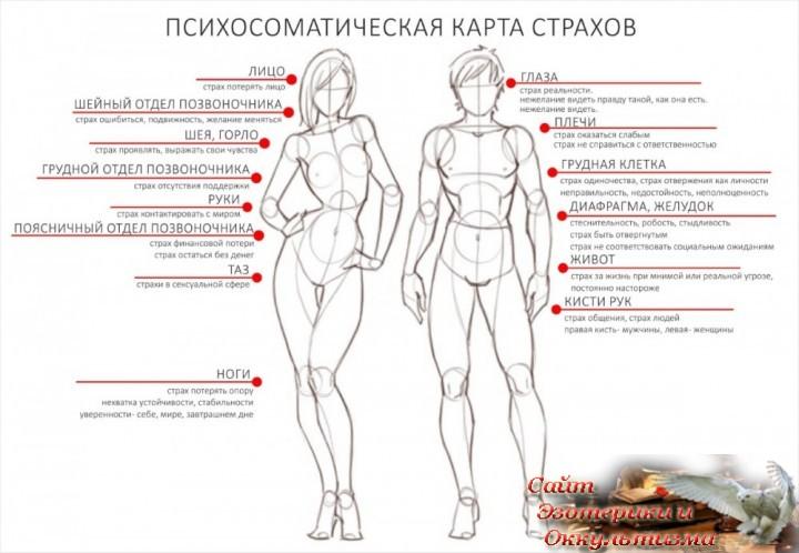 Сигналы тела. Телесная карта страхов. Эзотерика - Живое Знание - «Эзотерика»