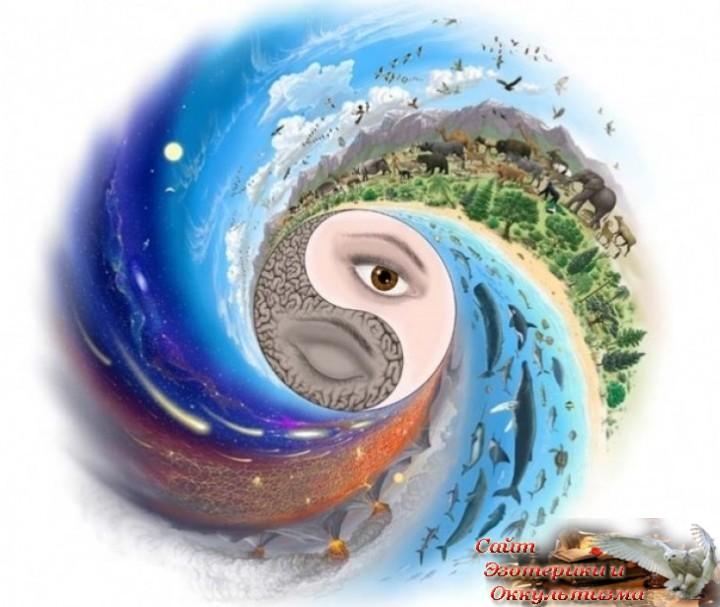 Как сохранить состояние баланса? Эзотерика - Живое Знание - «Эзотерика»