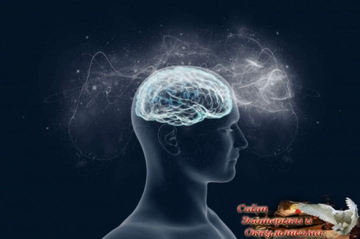 Внимание - самая ценная энергия. Эзотерика - Живое Знание - «Эзотерика»