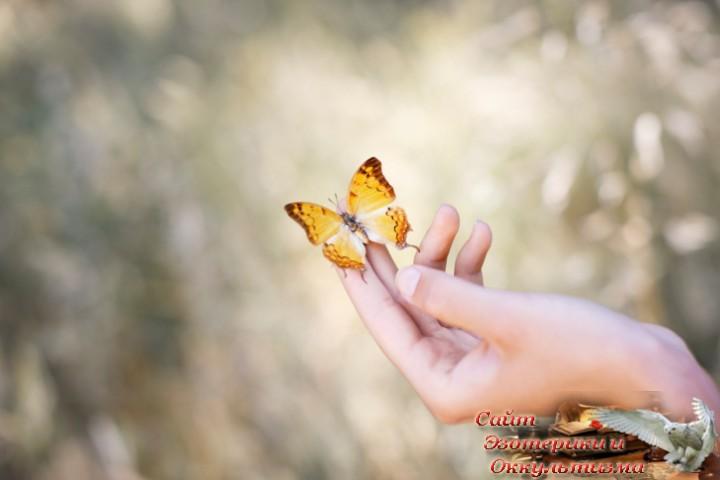Как простить себя. Как простить родителей. Как найти свое предназначение. Эзотерика - Живое Знание - «Эзотерика»