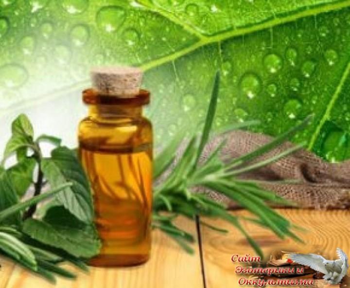 Использование эфирных масел для повышения качества медитаций. Эзотерика - Живое Знание - «Эзотерика»