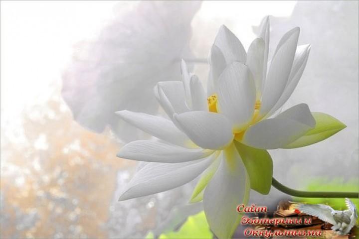 Душа как чистый ключ, или Представь, что все - видящие. Эзотерика - Живое Знание - «Эзотерика»