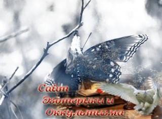 Бабочка души. Эзотерика - Живое Знание - «Эзотерика»
